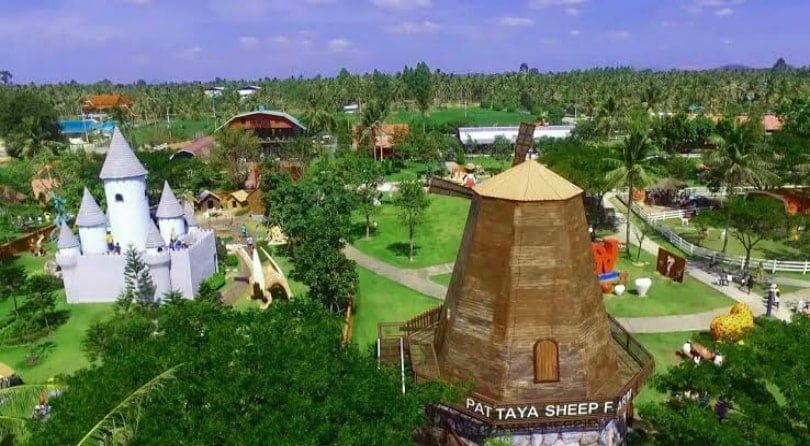 Pattaya Sheep Farm